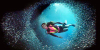 Scuba diving at Night in the Caribean 30 Cool Things For Successful Entrepreneurs To Do