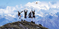 Trekking in the himalayas 30 Cool Things For Successful Entrepreneurs To Do