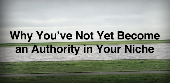 Why You've Not Yet Become an Authority in Your Niche